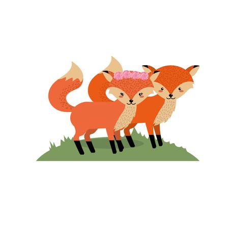 cute fox animal couple together vector illustration
