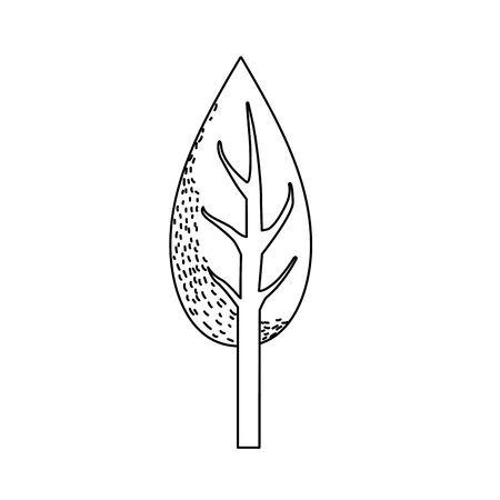 line natual and ecological tree with branches plant