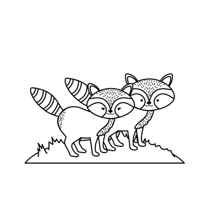 line cute raccoon animal couple together vector illustration