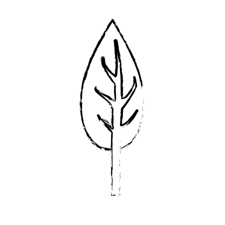 figure natual and ecological tree with branches plant vector illustration
