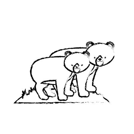 figure cute bear animal couple together vector illustration Illustration