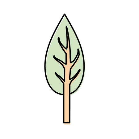natual and ecological tree with branches plant vector illustration