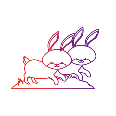 line cute rabbit animal couple together vector illustration