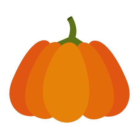 Pumpkin of autumn vegetable and season theme Isolated design Vector illustration