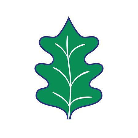 full color tropical kale leal natural plant vector illustration