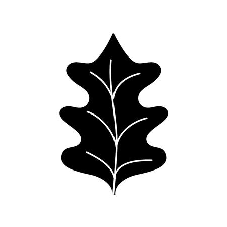 contour tropical kale leaf natural plant