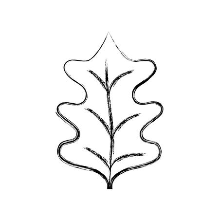 figure tropical kale leal natural plant vector illustration