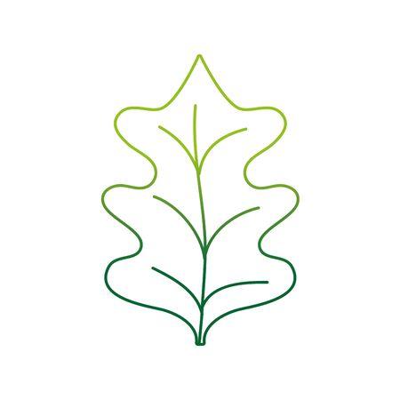 kleur lijn tropische boerenkool leal natuurlijke plant vector illustratie