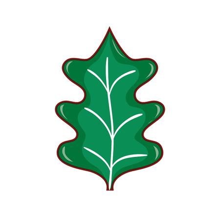 tropical kale leal natural plant vector illustration