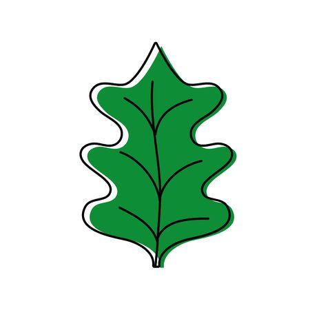 color tropical kale leal natural plant vector illustration