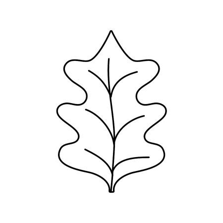 line tropical kale leal natural plant vector illustration