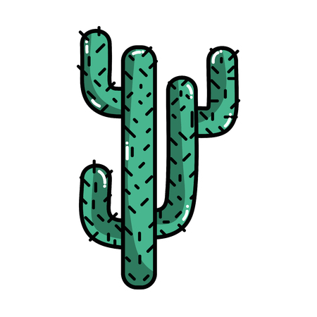 natural cactus summer plant desert vector illustration