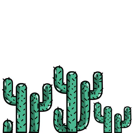 tropical natural cactus plants design vector illustration