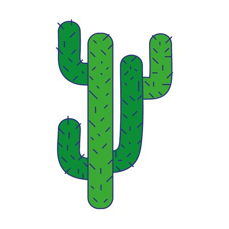 line color natural cactus summer plant desert