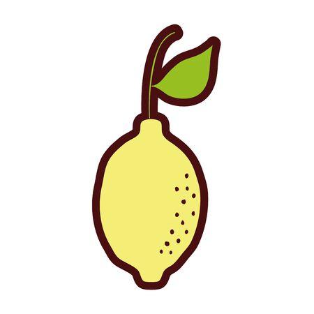 line color delicious lemon fresh and organic fruit