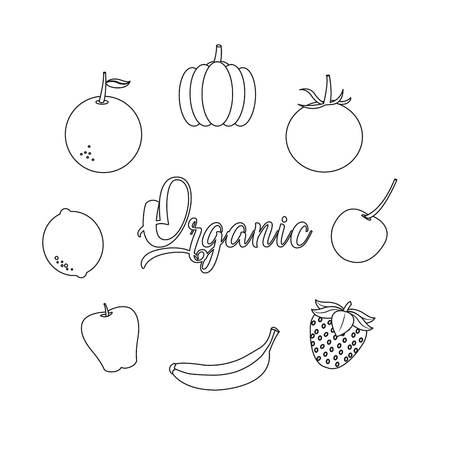 Icon set of organic and healthy food theme Vector illustration