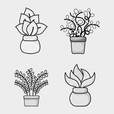 A set natural plants house decoration vector illustration