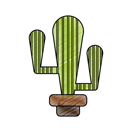 Cactus of plant desert and nature theme Isolated design Vector illustration Illustration
