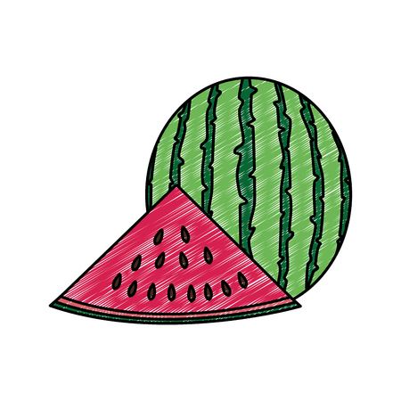 Watermelon of fruit healthy and organic food theme Isolated design Vector illustration  イラスト・ベクター素材