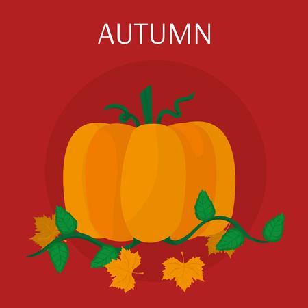 Pumpkin of Autumn season nature and harvest theme Vector illustration
