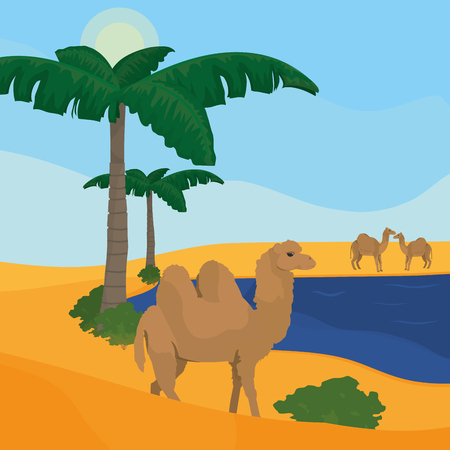 Oasis on desert vector illustration graphic design