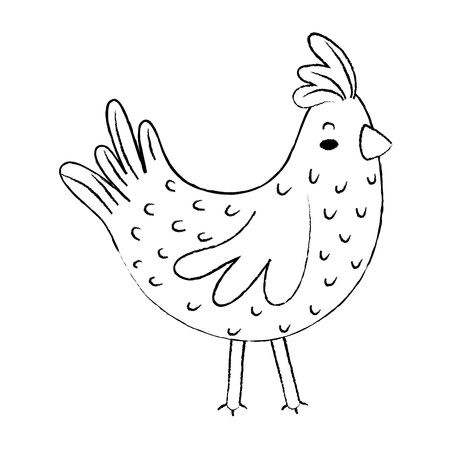 Grunge hen farm bird animal with wings
