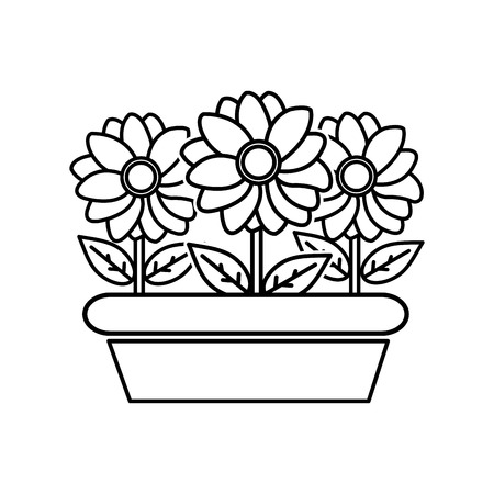 line nice flowers with petals and leaves inside plantpot vector illustration