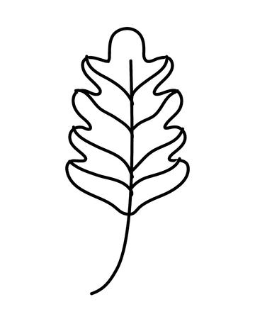 line kale leaf tropical nature plant vector illustration Illustration
