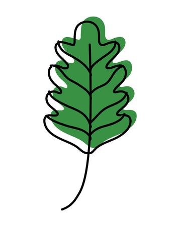 moved color kale leaf tropical nature plant Vector illustration. Illustration