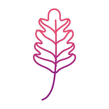 degraded line kale leaf tropical nature plant vector illustration