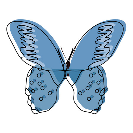 Beautiful butterfly with wings illustration.