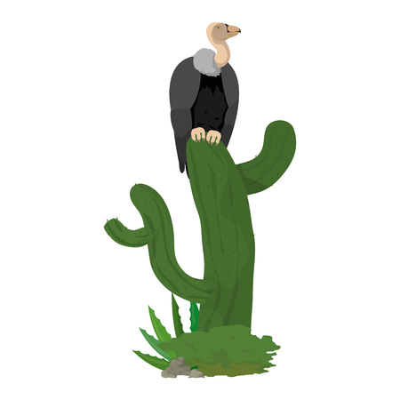 Wild vulture animal in the cactus plant illustration. Illustration