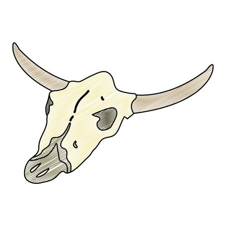 doodle buffalo animal dead skull in the desert vector illustration