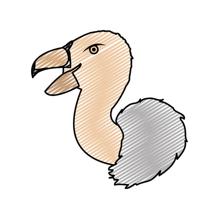 doodle wild vulture head predator animal vector illustration Illustration