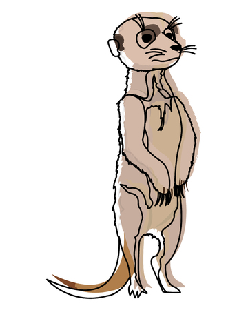 Moved color cute wild meerkat animal in the desert illustration.