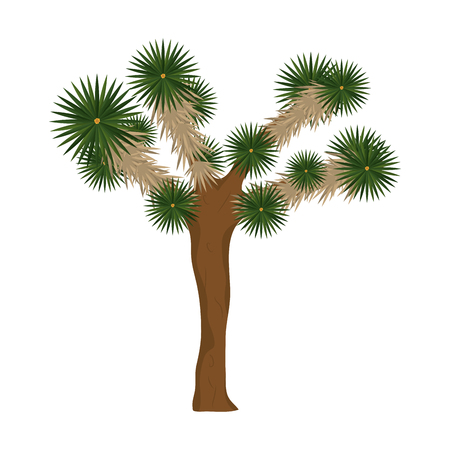 yucca brevifolia nature desert tree vector illustration Illustration
