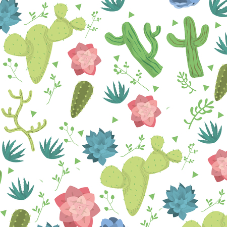 cactus flowers and avaceas with sedum pachyphyllum background vector illustration