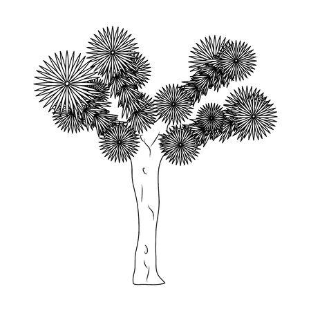 line yucca brevifolia nature desert tree vector illustration