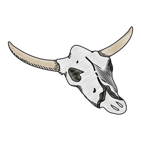 doodle nature buffalo desert dead skull vector illustration