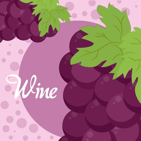 Wine purple grapes Illusztráció