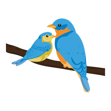 beauty bird animal with it son in the branch vector illustration