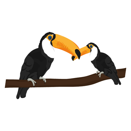 beauty toucan bird with it son in the branch vector illustration 일러스트