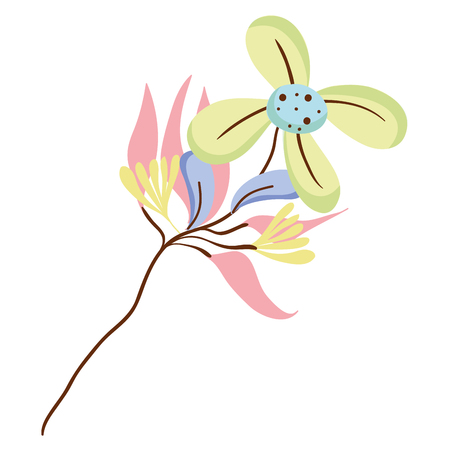 Exotic flowers with nature petals illustration Illustration