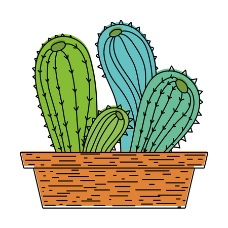 color desert cactus nature plant inside flowerpot vector illustration
