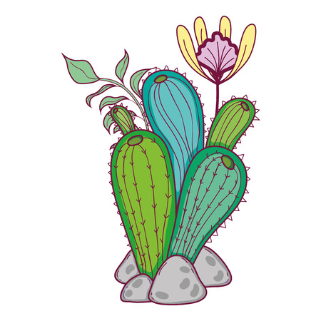 cactus plant with leaves and exotic flowers vector illustration