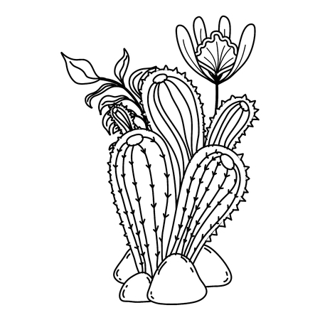 line cactus plant with leaves and exotic flowers vector illustration Illustration