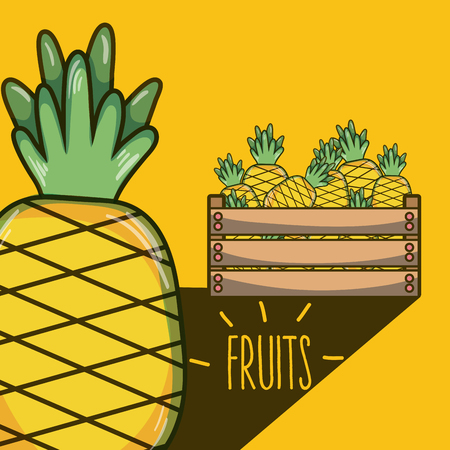 Pineapples inside wooden box vector illustration graphic design Illustration