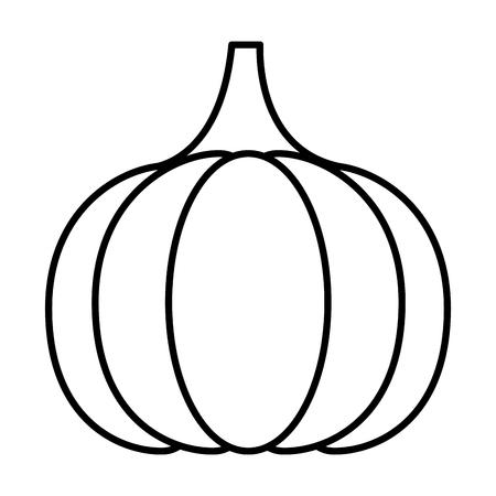 line organic garlic natural vegetable food vector illustration Vectores