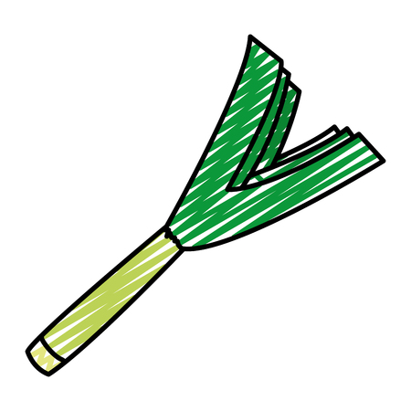 Doodle organic green onion vegetable food vector illustration Illustration