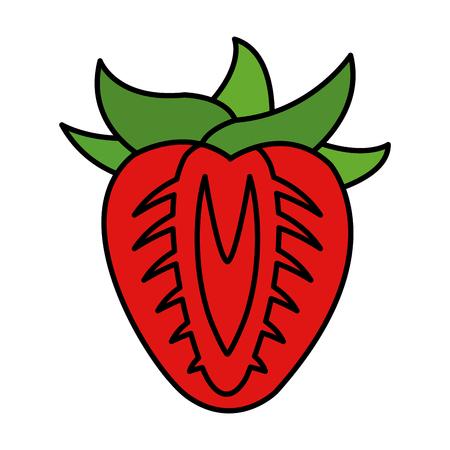 color delicious slice strawberry organic fruit vector illustration Vettoriali